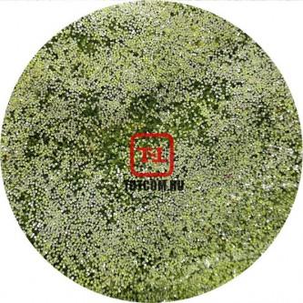 Салатовый Серебряный Неоновый металлик по 500 грамм от 0.1 до 4.0 мм. в ассортименте.