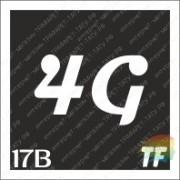 """Трафарет 17В """"4G вид 4"""""""