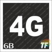 """Трафарет 6В """"4G"""""""