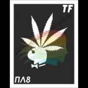 Трафарет ПЛ8