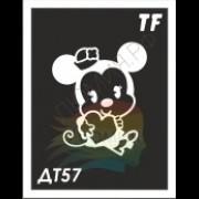 Трафарет ДТ57