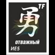 """Трафарет ИЕ5 """"ОТВАЖНЫЙ"""""""