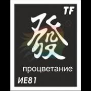 """Трафарет ИЕ81 """"ПРОЦВЕТАНИЕ"""""""