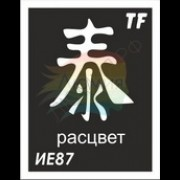 """Трафарет ИЕ87 """"РАСЦВЕТ"""""""