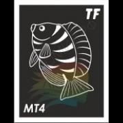 Трафарет МТ4