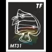 Трафарет МТ31