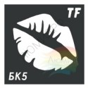 Трафарет БК5