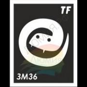 Трафарет ЗМ36